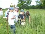 junior master gardeners having fun in the marsh