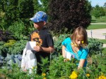 helping in the junior master garden