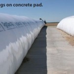 2 large white silage bags