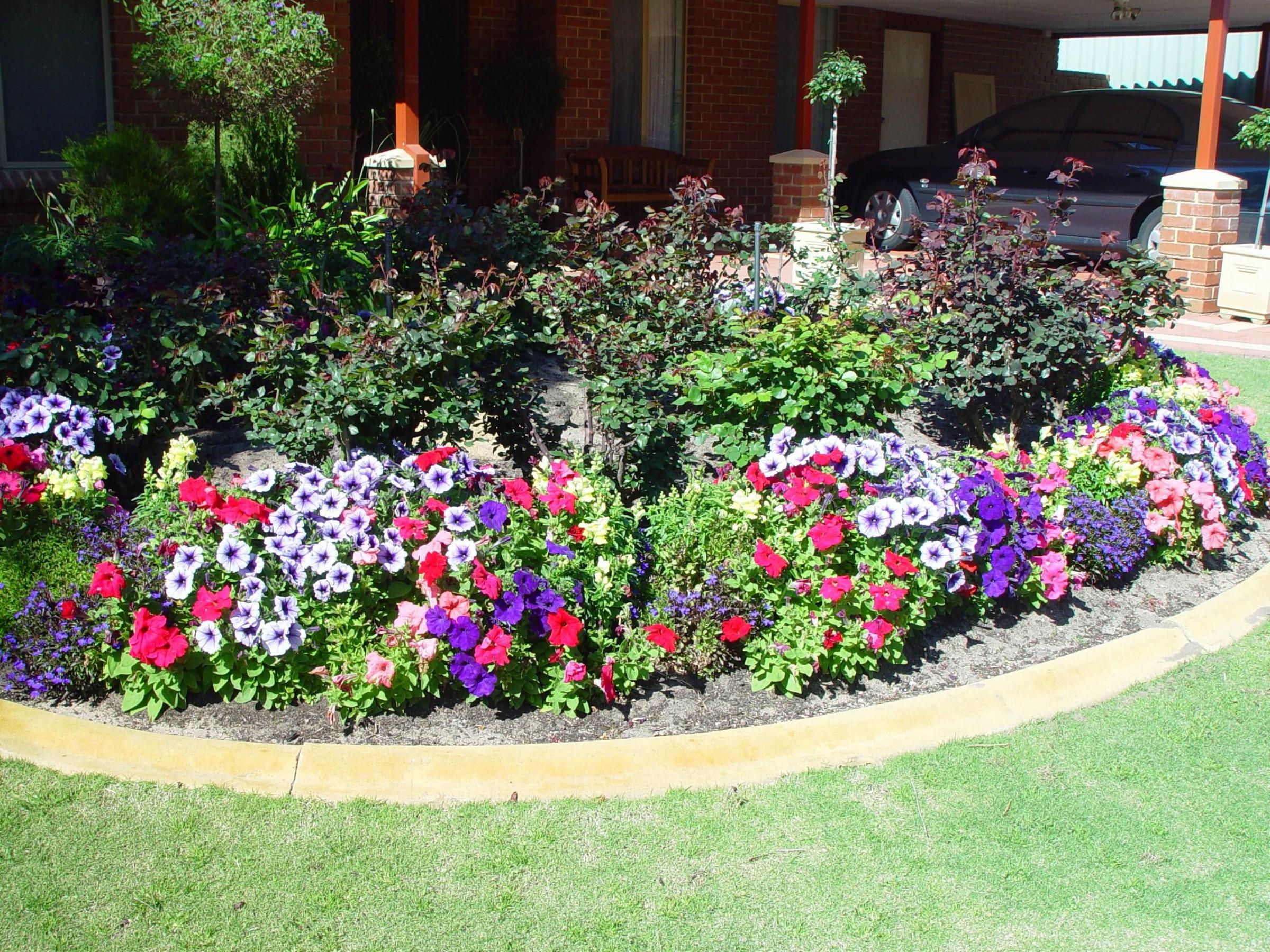Master Gardener Help Line