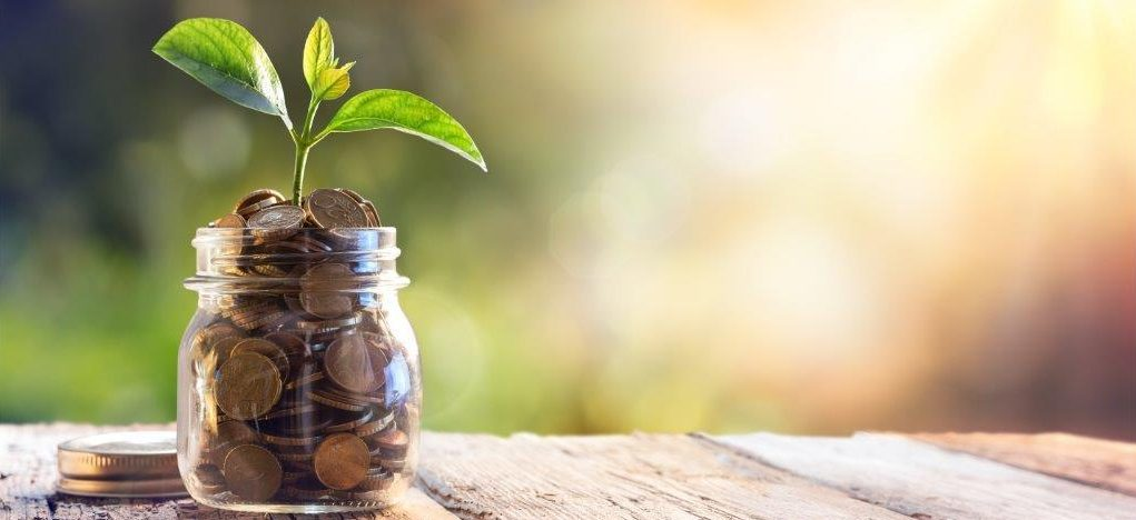 shutterstock-saving-plant-in-money-small