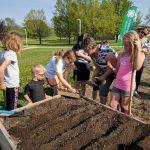 Kids from Fond du Lac County Junior Master Gardener program working in a raised garden