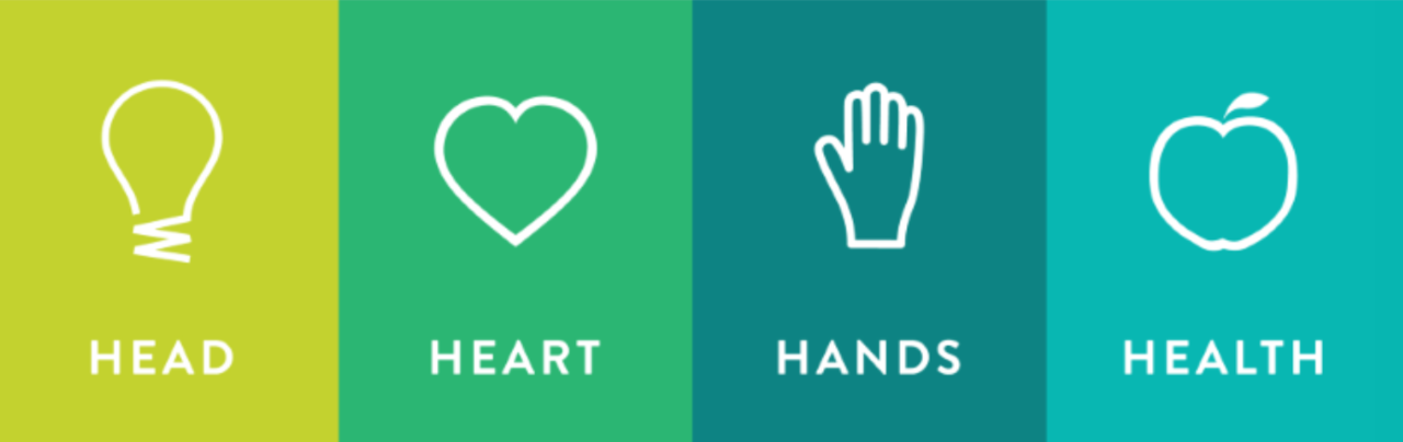 Head Heart Hands Health symbols and words for 4-H